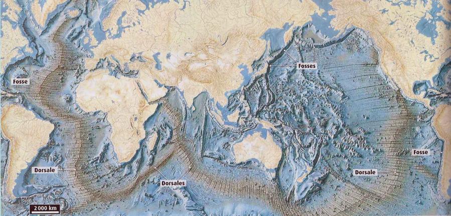 Dorsale medio oceanique